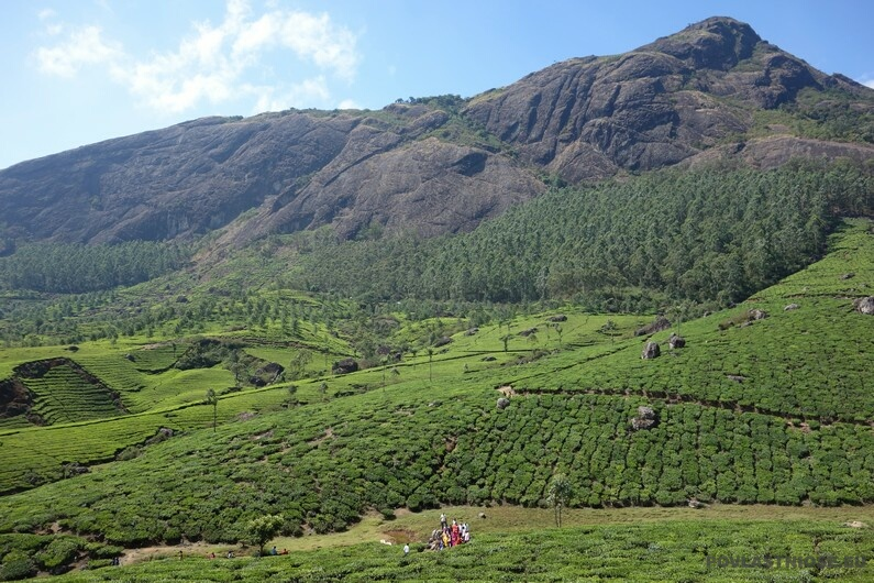 Indie View point Munnar